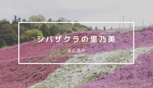 【東広島】シバザクラの里乃美で春を満喫!アクセスがわかりにくいので注意