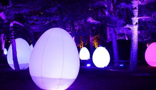 「チームラボ 広島城 光の祭」へ行ってきた。幻想的な空間で非日常を味わう